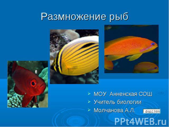 Размножение рыб МОУ Анненская СОШУчитель биологииМолчанова А.Л.