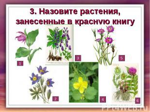 3. Назовите растения, занесенные в красную книгу