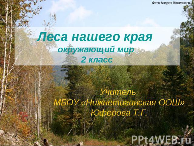 Леса нашего края окружающий мир 2 класс Учитель МБОУ «Нижнетигинская ООШ» Юферова Т.Г.