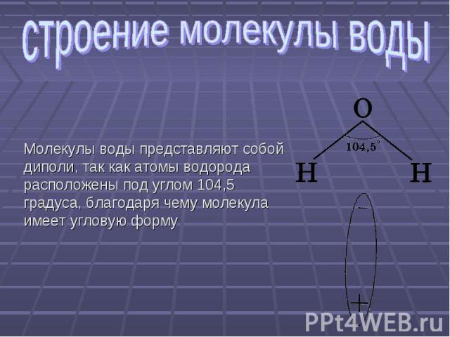 строение молекулы воды Молекулы воды представляют собой диполи, так как атомы водорода расположены под углом 104,5 градуса, благодаря чему молекула имеет угловую форму