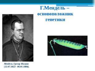 Г.Мендель – основоположникгенетики Мендель Грегор Иоганн (22.07.1822– 06.01.1884