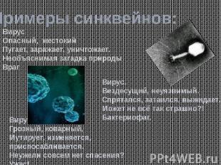 Примеры синквейнов: ВирусОпасный, жестокийПугает, заражает, уничтожает.Необъясни