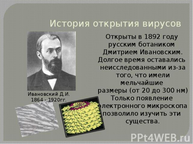 История открытия вирусов Открыты в 1892 году русским ботаником Дмитрием Ивановским.Долгое время оставались неисследованными из-затого, что имели мельчайшие размеры (от 20 до 300 нм)Только появление электронного микроскопапозволило изучить эти сущест…
