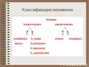 Классификация витаминов