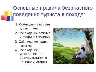 Основные правила безопасного поведения туриста в походе: 1. Соблюдение правил ди