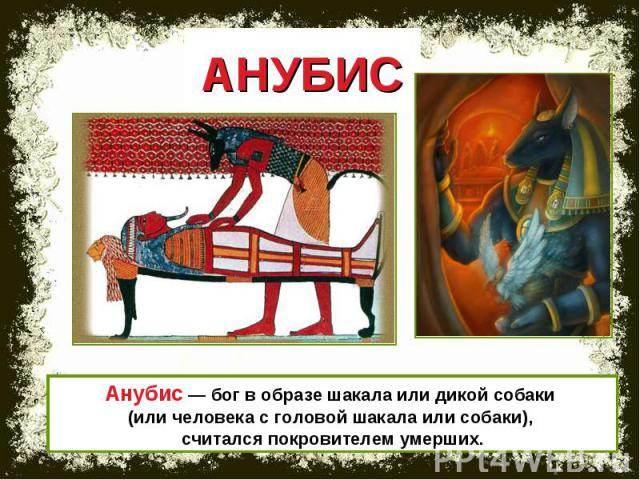 АНУБИС Анубис — бог в образе шакала или дикой собаки (или человека с головой шакала или собаки), считался покровителем умерших.
