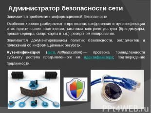 Администратор безопасности сети Занимается проблемами информационной безопасност