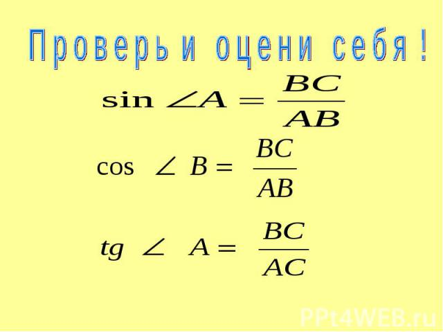 П р о в е р ь и о ц е н и с е б я !