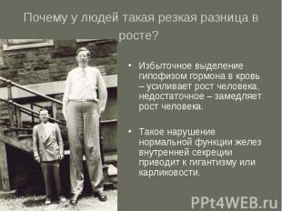 Почему у людей такая резкая разница в росте? Избыточное выделение гипофизом горм