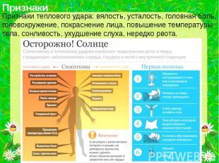 Признаки теплового удара: вялость, усталость, головная боль, головокружение, пок
