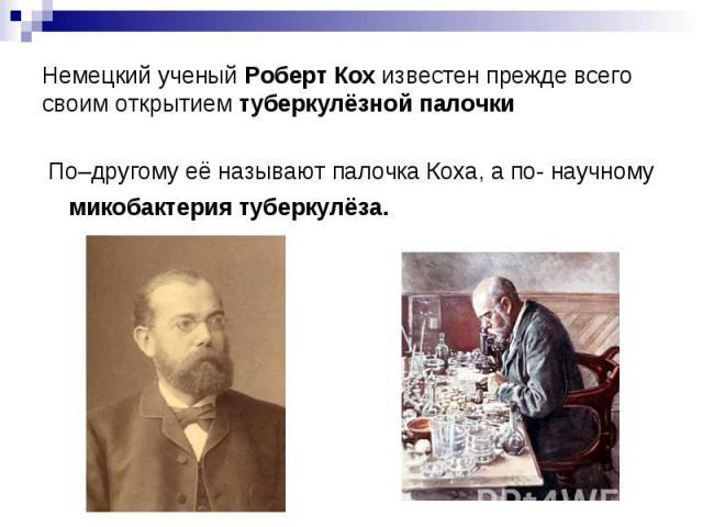 Немецкий ученый Роберт Кох известен прежде всего своим открытием туберкулёзной палочки По–другому её называют палочка Коха, а по- научному микобактерия туберкулёза.