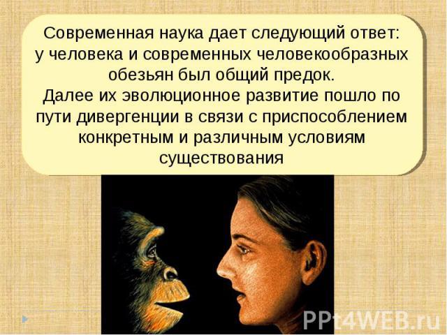 Современная наука дает следующий ответ:у человека и современных человекообразных обезьян был общий предок.Далее их эволюционное развитие пошло по пути дивергенции в связи с приспособлением конкретным и различным условиям существования