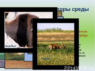 Экологические факторы среды Антропогенные факторы среды Это факторы воздействия