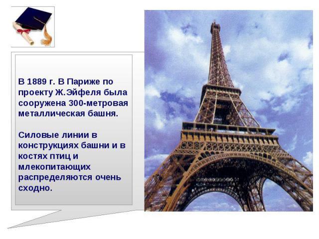 В 1889 г. В Париже по проекту Ж.Эйфеля была сооружена 300-метровая металлическая башня. Силовые линии в конструкциях башни и в костях птиц и млекопитающих распределяются очень сходно.