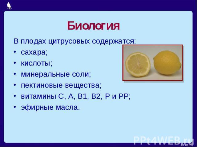 Биология В плодах цитрусовых содержатся:сахара;кислоты;минеральные соли; пектиновые вещества; витамины C, A, B1, B2, P и PP;эфирные масла.
