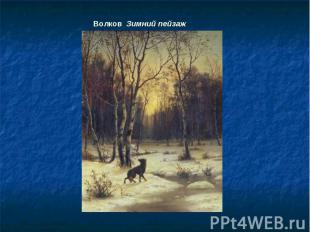 Волков Зимний пейзаж