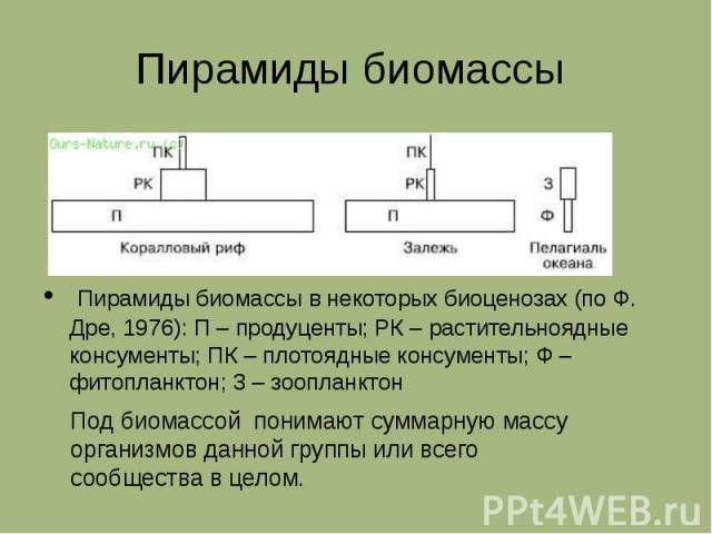 Пирамиды биомассы Пирамиды биомассы в некоторых биоценозах (по Ф. Дре, 1976): П – продуценты; РК – растительноядные консументы; ПК – плотоядные консументы; Ф – фитопланктон; 3 – зоопланктон Под биомассой понимают суммарную массу организмов данной гр…