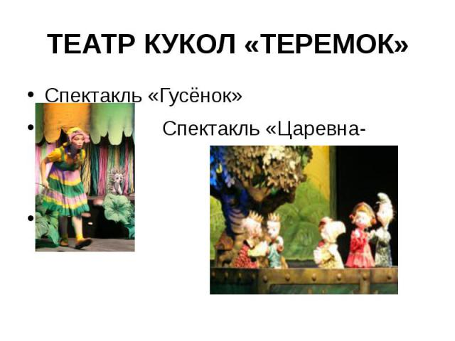 ТЕАТР КУКОЛ «ТЕРЕМОК»Спектакль «Гусёнок» Спектакль «Царевна-лягушка»