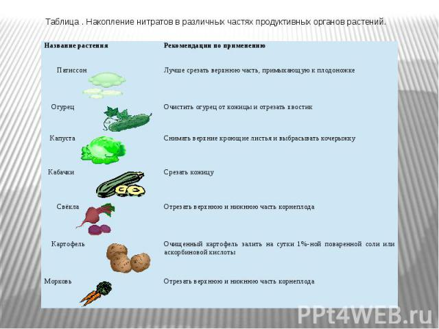 Таблица . Накопление нитратов в различных частях продуктивных органов растений.