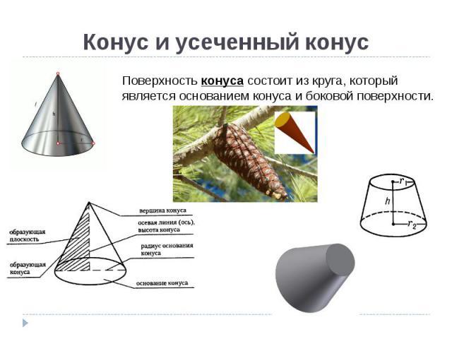 Конус и усеченный конус Поверхность конуса состоит из круга, который является основанием конуса и боковой поверхности.