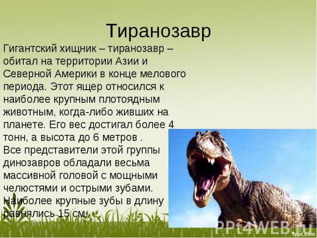 Гигантский хищник – тиранозавр – обитал на территории Азии и Северной Америки в конце мелового периода. Этот ящер относился к наиболее крупным плотоядным животным, когда-либо живших на планете. Его вес достигал более 4 тонн, а высота до 6 метров .Вс…