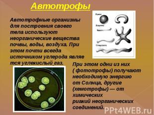 Автотрофы Автотрофные организмы для построения своего тела используют неорганиче