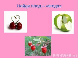 Найди плод – «ягода»