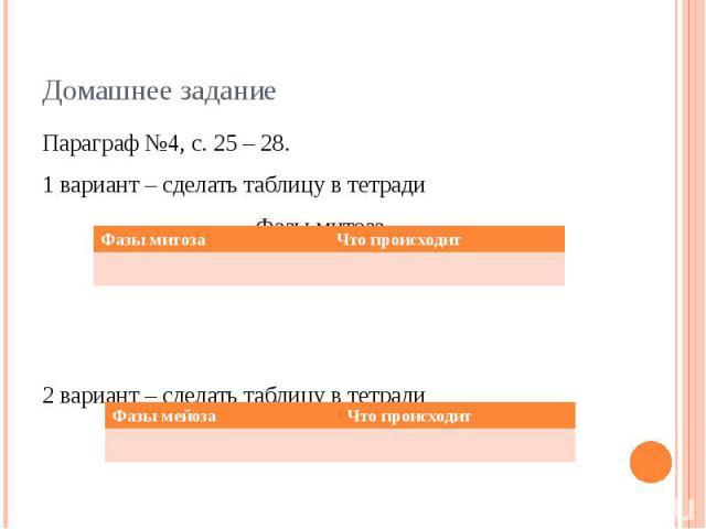 Домашнее задание Параграф №4, с. 25 – 28.1 вариант – сделать таблицу в тетради Фазы митоза.2 вариант – сделать таблицу в тетрадиФазы мейоза.