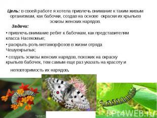 Цель: в своей работе я хотела привлечь внимание к таким живым организмам, как ба