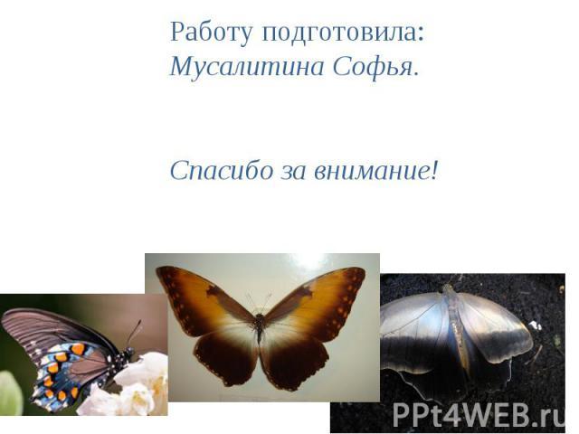 Работу подготовила:Мусалитина Софья.Спасибо за внимание!
