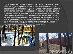 Одной из причин покупки усадьбы Толстого в Хамовниках стало наличие сада, которы