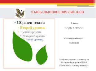 ЭТАПЫ ВЫПОЛНЕНИЯ ЛИСТЬЕВ 1 этапПОДМАЛЁВОКиспользуемый цвет:зелёныйЗелёным цветом
