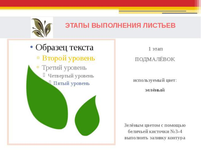 ЭТАПЫ ВЫПОЛНЕНИЯ ЛИСТЬЕВ 1 этапПОДМАЛЁВОКиспользуемый цвет:зелёныйЗелёным цветом с помощью беличьей кисточки №3-4 выполнить заливку контура