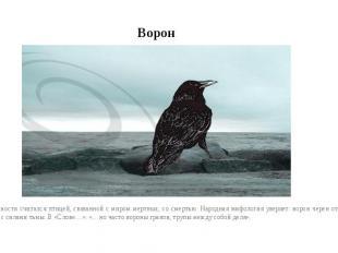 ВоронВ древности считался птицей, связанной с миром мертвых, со смертью. Народна