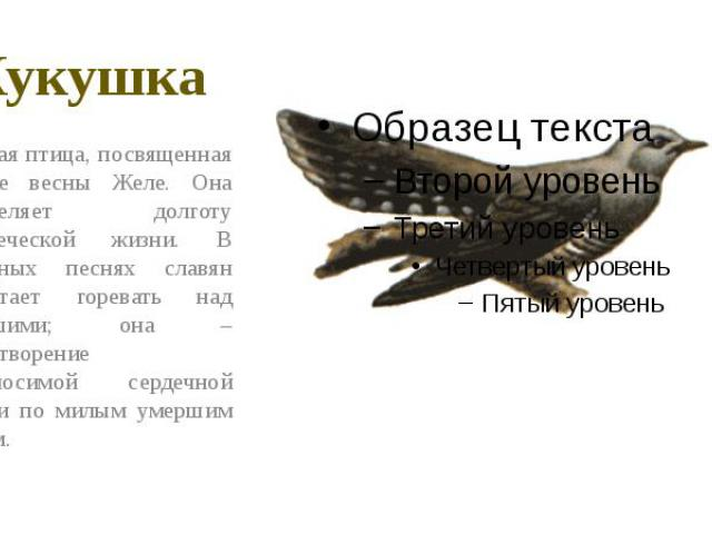 Кукушка Вещая птица, посвященная богине весны Желе. Она определяет долготу человеческой жизни. В народных песнях славян прилетает горевать над умершими; она – олицетворение невыносимой сердечной печали по милым умершим людям.