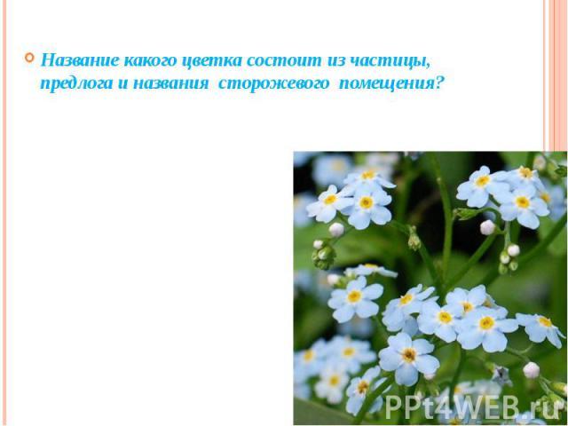 Название какого цветка состоит из частицы, предлога и названия сторожевого помещения?