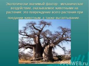 Экологически значимый фактор - механическое воздействие, оказываемое животными н