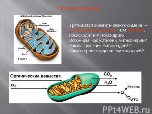 Полное кисление Третий этап энергетического обмена — кислородное окисление, или