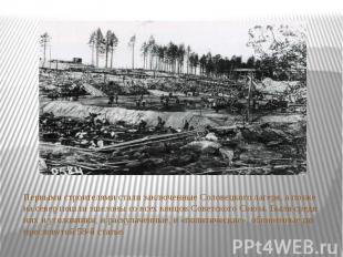Первыми строителями стали заключенные Соловецкого лагеря, а позже на север пошли