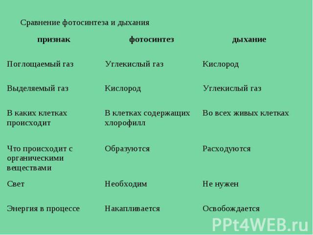 Сравнение фотосинтеза и дыхания