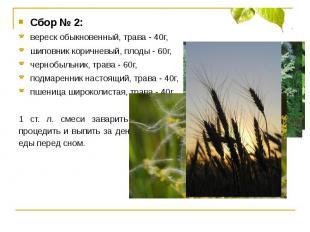 Сбор № 2:вереск обыкновенный, трава - 40г, шиповник коричневый, плоды - 60г,черн