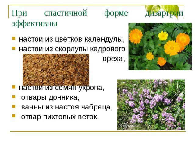 При спастичной форме дизартрии эффективны настои из цветков календулы,настои из скорлупы кедрового ореха,настой из семян укропа, отвары донника, ванны из настоя чабреца, отвар пихтовых веток.
