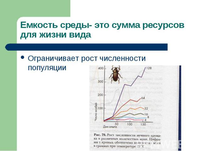 Емкость среды- это сумма ресурсов для жизни вида Ограничивает рост численности популяции