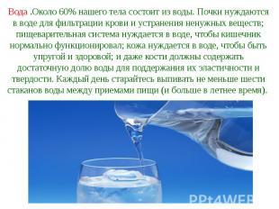 Вода .Около 60% нашего тела состоит из воды. Почки нуждаются в воде для фильтрац