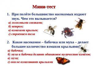 При полёте большинство насекомых издают звук. Чем это вызывается? а) голосовыми