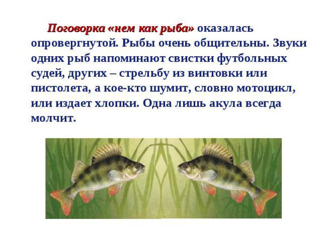 Поговорка «нем как рыба» оказалась опровергнутой. Рыбы очень общительны. Звуки одних рыб напоминают свистки футбольных судей, других – стрельбу из винтовки или пистолета, а кое-кто шумит, словно мотоцикл, или издает хлопки. Одна лишь акула всегда молчит.