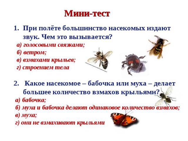 При полёте большинство насекомых издают звук. Чем это вызывается? а) голосовыми связками; б) ветром; в) взмахами крыльев; г) строением тела2. Какое насекомое – бабочка или муха – делает большее количество взмахов крыльями? а) бабочка; б) муха и бабо…