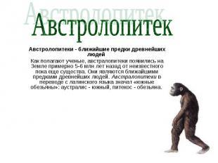 Австролопитек Австролопитеки - ближайшие предки древнейших людей Как полагают уч