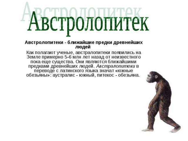 Австролопитек Австролопитеки - ближайшие предки древнейших людей Как полагают ученые, австралопитеки появились на Земле примерно 5-6 млн лет назад от неизвестного пока еще существа. Они являются ближайшими предками древнейших людей. Австралопитеки в…