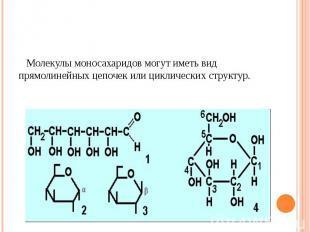 Молекулы моносахаридов могут иметь вид прямолинейных цепочек или циклических стр